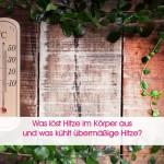 Hitze - TCM Ernährungsberatung - Shiatsu - Anna Reschreiter