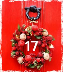Gewürz Adventskalender 2016 - 17 - TCM Ernährungsberatung - Anna Reschreiter