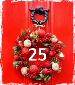 Gewürz Adventskalender 2016 - 25 - TCM Ernährungsberatung - Anna Reschreiter