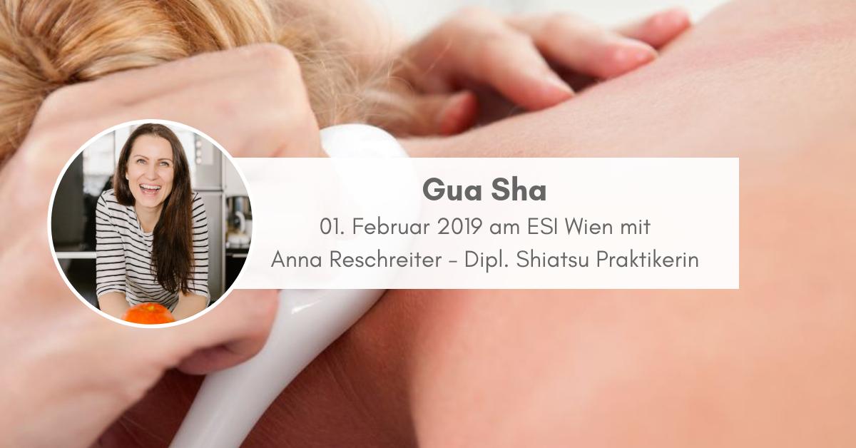 Gua Sha ESI Wien - TCM Ernährung - 5 Elemente Küche - TCM Ernährungsberatung Wien - Anna Reschreiter