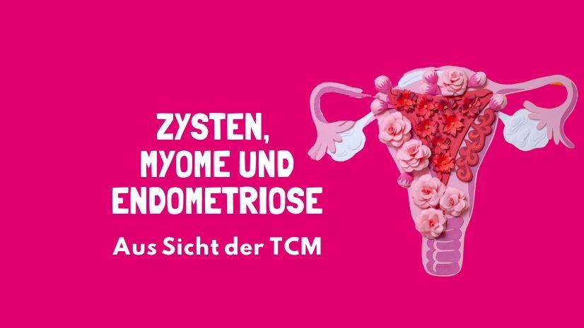 Zysten - Myome - Endometriose - Traditionelle Chinesische Medizin - TCM Ernährung - 5 Elemente Ernährung - Ernährungsumstellung - Ernährungsberatung - Ernährungsexpertin - Yin und Yang - Nässe Kälte in Leber - Qi Mangel - Qi Stagnation - Kälte in der Leber - Yang Mangel - Anna Reschreiter - annatsu